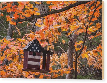 Wood Print featuring the photograph Patriotic Birdhouse - 01 by Wayne Meyer