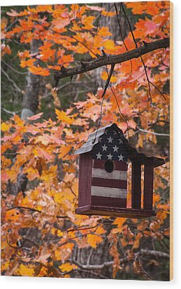 Wood Print featuring the photograph Patriotic Birdhouse - 02 by Wayne Meyer