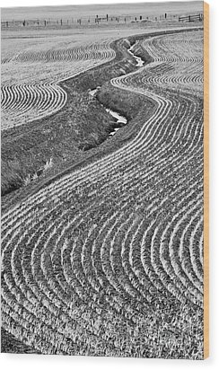 Patterns 1 Wood Print by Don Hall