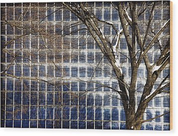 Patterns Of Winter Wood Print by Joanna Madloch