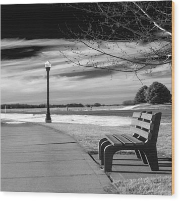 Pause Wood Print by Don Spenner