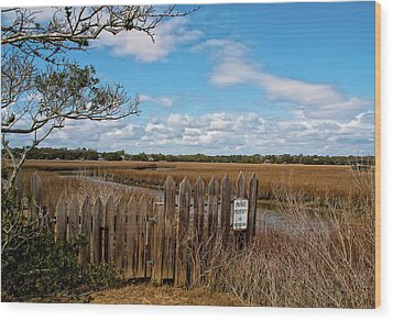 Pawley's Picket Fence Wood Print by Sandra Anderson