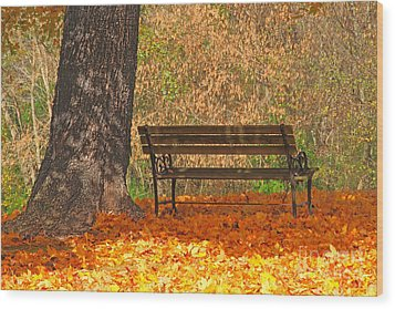 Peace And Quiet Wood Print by Geraldine DeBoer
