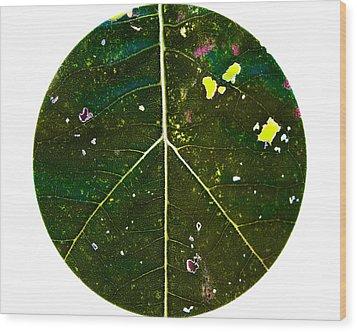 Flower Power Wood Print by Annette Hugen