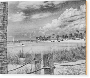 Wood Print featuring the photograph Peace by Howard Salmon