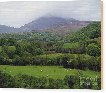 Peace On The Emerald Isle Wood Print by Patricia Griffin Brett
