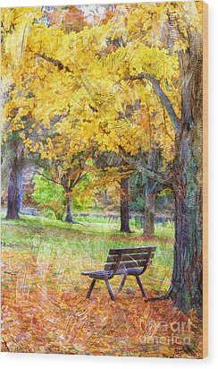 Peaceful Autumn Wood Print by Darren Fisher