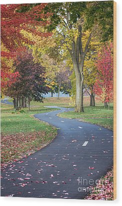 Peaceful Autumn Path Winona Photo Wood Print
