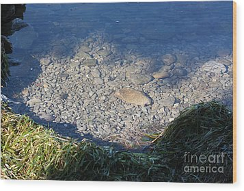 Peaceful Bay Wood Print