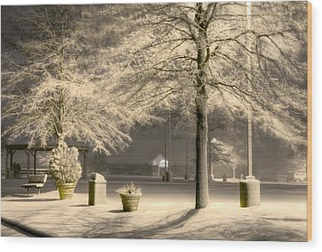 Peaceful Blizzard Wood Print by JC Findley