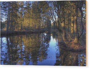 Peaceful Cedar Wood Print