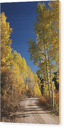 Peaceful Fall Road Wood Print by Michael J Bauer