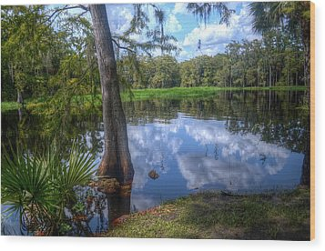 Peaceful Florida Wood Print by Timothy Lowry
