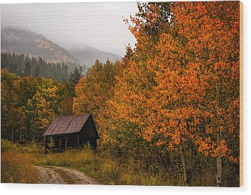 Wood Print featuring the photograph Peaceful by Ken Smith