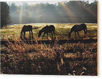 Peaceful Pasture Wood Print by Carlee Ojeda