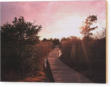 Wood Print featuring the photograph Peaceful Path by Karen Silvestri