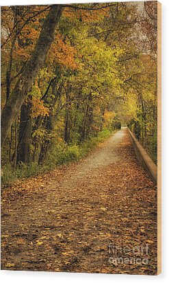 Peaceful Pathway Wood Print