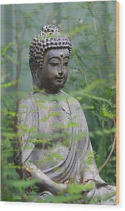 Wood Print featuring the photograph Peaceful Repose by Keith Hawley