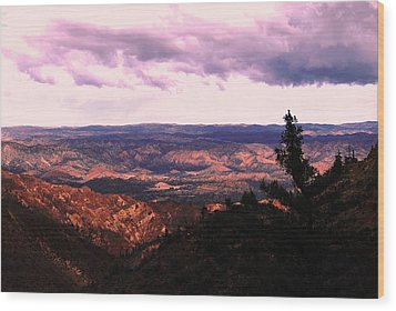Wood Print featuring the photograph Peaceful Valley by Matt Harang