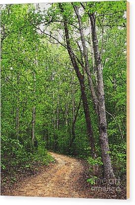Peaceful Walk Wood Print by Lydia Holly