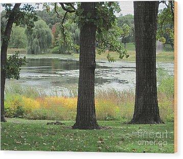 Peaceful Water Wood Print by Kathie Chicoine