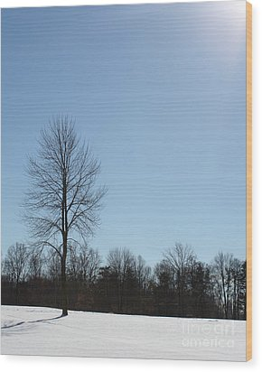 Wood Print featuring the photograph Peaceful Winter Scene by Anita Oakley