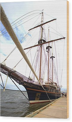 Wood Print featuring the photograph Peacemaker by Gordon Elwell