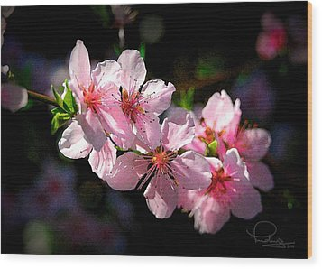 Wood Print featuring the photograph Peach Blossoms by Ludwig Keck