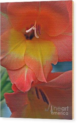 Peach Glads  Wood Print