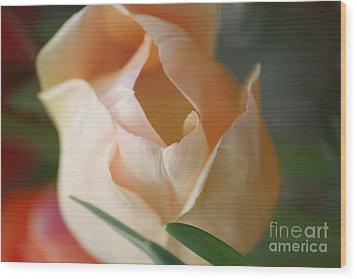 Wood Print featuring the photograph Peach Harmony by Mary Lou Chmura