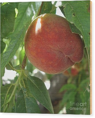 Wood Print featuring the photograph Peach by Kerri Mortenson