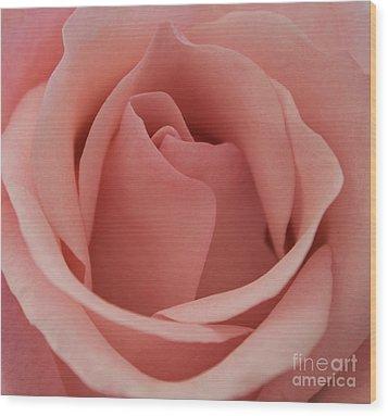 Peach Rose Wood Print by Arlene Carmel