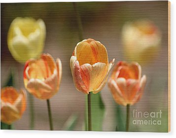 Peaches And Cream Wood Print by Living Color Photography Lorraine Lynch