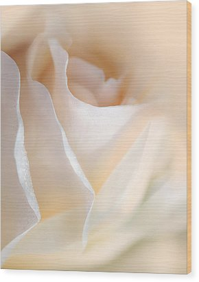 Peaches And Cream Rose Flower Wood Print by Jennie Marie Schell