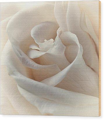Peaches N Cream Wood Print by Darlene Kwiatkowski
