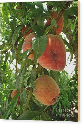Wood Print featuring the photograph Peaches On The Tree by Kerri Mortenson