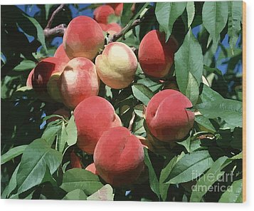 Peaches On Tree Wood Print by Lanjee Chee