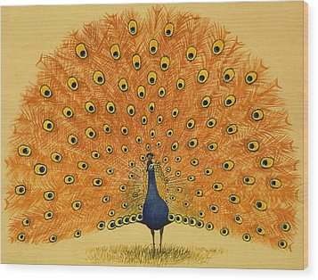 Peacock Wood Print by English School