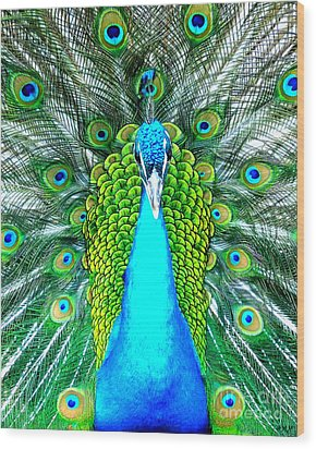 Peacock Face On Wood Print by Heidi Manly