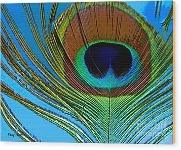 Peacock Feather 3 Wood Print