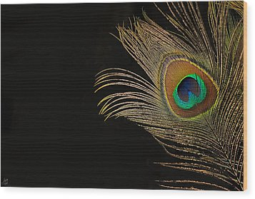 Wood Print featuring the photograph Peacock Feather Still Life by Lisa Knechtel