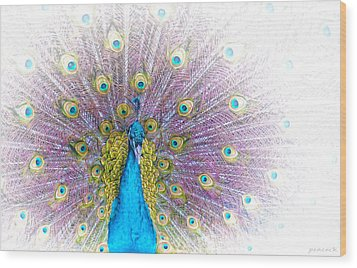 Wood Print featuring the photograph Peacock by Holly Kempe