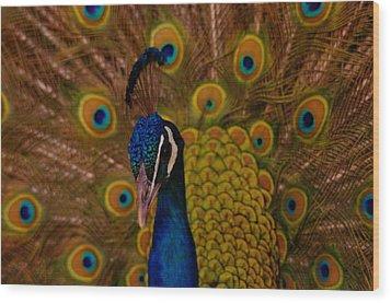 Peacock Wood Print by Jeff Swan
