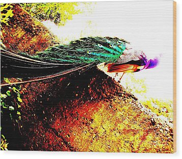 Wood Print featuring the photograph Peacock Tail by Vanessa Palomino
