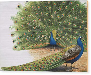 Peacocks Wood Print by RB Davis