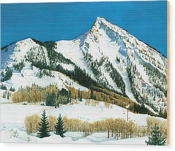 Peak Adventure Wood Print by Barbara Jewell