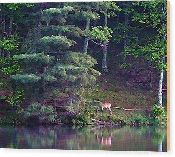Peaks Of Otter Deer Wood Print by John Haldane