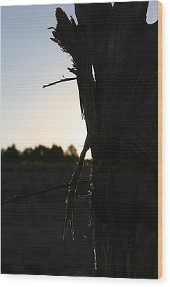Wood Print featuring the photograph Pealing by David S Reynolds