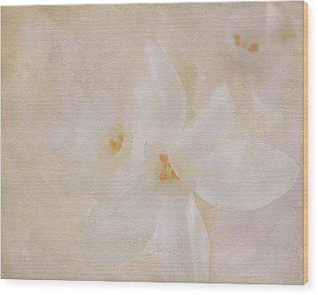 Pearl On Petals Wood Print