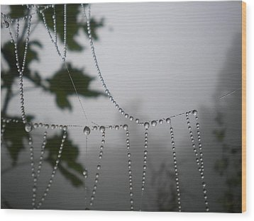 Pearls From Heaven Wood Print by Diannah Lynch